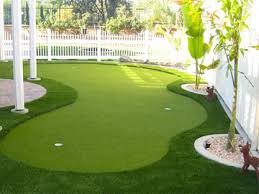 artificial turf yard. Golf And Putt Artificial Turf Yard