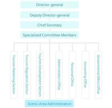 Information System Department Organizational Chart Organizational Structure Executive Information System