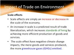 term paper topics      Term paper business environment