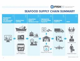 Sustainable Seafood Chart Supply Chains Are Key To Change For Sustainable Fisheries