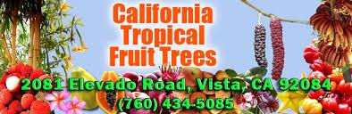 Why Your Tree Isnu0027t Producing Fruit U2013 Press EnterpriseSouthern California Fruit Trees
