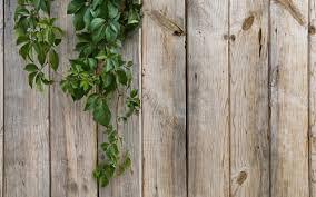 Wood Fence Wallpaper Background 7509 2560 x 1600 WallpaperLayercom