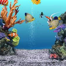 Acquista allingrosso online quarzo di ghiaia acquario da