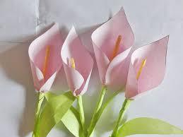 Calla Lily Paper Flower Under Fontanacountryinn Com