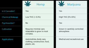 Thc Body Fat Chart Does Cbd Show Up On A Drug Test How Much Thc For A Positive