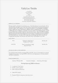 Resume For Stay At Home Mom Example Stay At Home Mom Job Description For Resume Samples Business Document 20