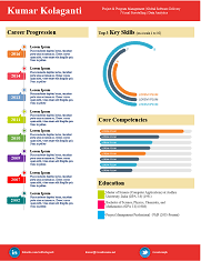 ... Visual Resume created by PictoCv.com ...