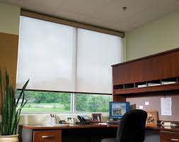 Types Of Window Blinds Blinds For Windows Roman Shades Manual 100 Polyester Zebra