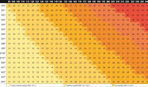 Bmi Chart Obese Morbidly Obese Easybusinessfinance Net