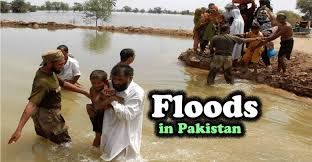 floods in essay in english outline the college study floods in essay in english outline