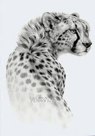 B Top Voděodolné Dočasné Tetování Motiv Gepard černá
