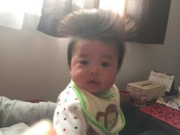 髪の毛が爆発した赤ちゃんが可愛すぎるwww 話題の画像プラス
