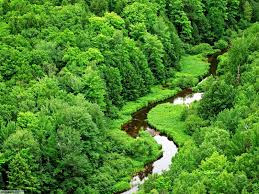 most beautiful green nature wallpapers in the world. Most Beautiful Nature Photos StyleGifPic Green Wallpapers In The World And