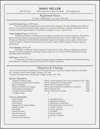 Sample Nurse Practitioner Resume Curriculum Vitae Samples For Nurse