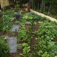 Small Picture Edible Garden Design and Construction Port Melbourne Ross