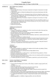 Substation Apprentice Sample Resume Lineman Resume Samples Velvet Jobs 1