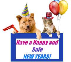 Bildresultat för animals new year