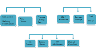 Organizational Chart Of Sales And Marketing Department In A Hotel 5 Star Hotel Organizational Chart