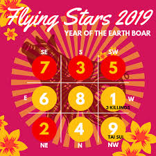 Feng Shui Flying Stars 2019 Chart Cures Enhancers