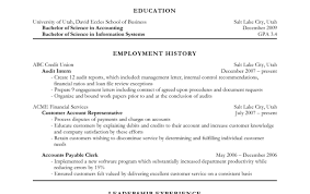 Good Accounting Resume Sales Manager Resume Sample