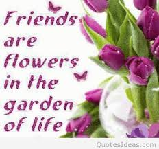 Beautiful Quotes With Flowers Best Of Amazing Flowers Quotes With Pics And Wallpapers