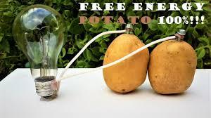 Potato Powered Light Bulb Project Free Energy Light Bulbs 220v Using Potato