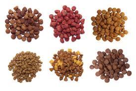 Zignature Feeding Chart Zignature Dog Food Customer Reviews Recalls And Ingredient