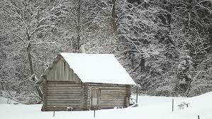 wooden cottage in the middle stock footage 100 royalty free 8817895 shutterstock