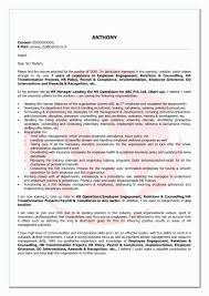 Standard Resume Format For It Engineers Inspirational Software