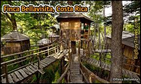 invisible tree house hotel. Best Treehouse Hotels In The World, Top 10, Finca Bellavisita Costa Rica Invisible Tree House Hotel