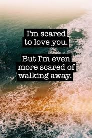 I M In Love With You Quotes Interesting I'm Scared To Love You But I'm Even More Scared Of Walking Away