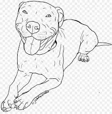 American Pit Bull Terrier Cucciolo Disegno Da Colorare Cucciolo