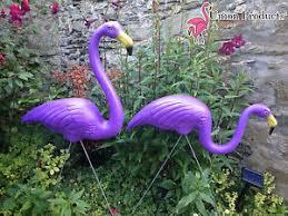 garden flamingos. Contemporary Garden Image Is Loading PAIRNewGenuineDonFeatherstonePURPLEPlasticLawn To Garden Flamingos T