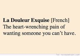 La Douleur Exquise The Heartwrenching Pain Of Wanting Someone You Awesome Love U Cant Have