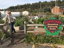 grow pittsburgh community garden sustaility fund now accepting s for grants
