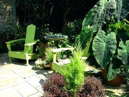 patio plants patio plants for shade bunting garden 9 6 2 pm patio plants partial shade patio plants