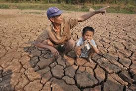 Image result for đất khô cằn