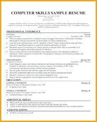 Additional Skills On A Resumes Additional Skills For Resume Blaisewashere Com