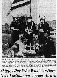 "「War Dog Program, or ""K-9 Corps.""」の画像検索結果"