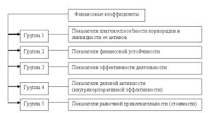 Дипломная работа Анализ бухгалтерской отчетности ООО Бозал  Дипломная работа Анализ бухгалтерской отчетности ООО Бозал ru