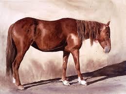The Art of Polly Barrett - Fall 2008 Issue of Horses in Art Magazine