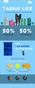 Comparison Infographic Template 7 Best Infographic Makers For Building An Infographic From Scratch