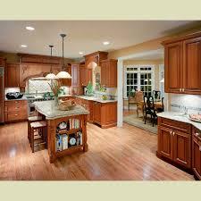 Popular Kitchen Designs Kitchens Cabinets Medium Oak Kitchen Cabinets Design Ideas