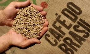 The lavazza coffee we drink today is the results of his idea: Coffee Beans Brazil Coffee Beans From Brazil Coffeebrazil