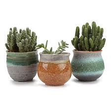 Attractive T4U 7CM Ceramic Summer Trio Succulent Plant Pot/Cactus Plant Pot Flower Pot /Container