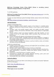 Free Professional Resume Templates Microsoft Word 2007 Awesome 022