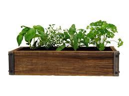 Indoor Herb Garden Kits To Grow Herbs Indoors Hgtv Indoor Herb Planters