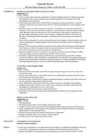 Audit Manager Resume Sample Nguonhangthoitrang Net