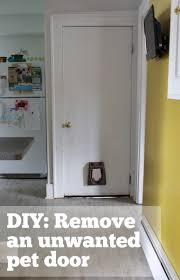 How to patch a hole in a hollow door | merrypad