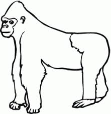 Small Picture free animals gorilla printable colouring pages for preschool